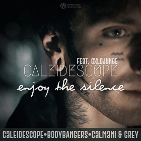 CALEIDESCOPE FEAT. GXLDJUNGE - ENJOY THE SILENCE